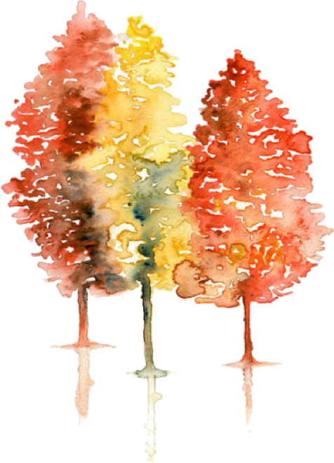coloredtrees